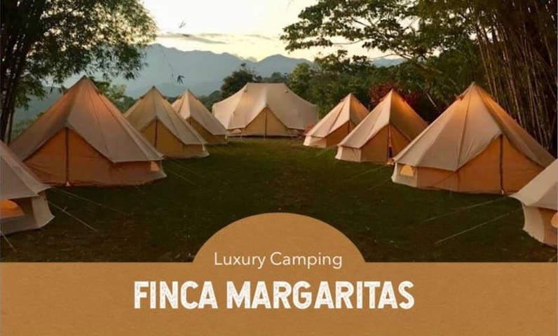 Luxury Camping in a Coffee Farm · Standard Tent