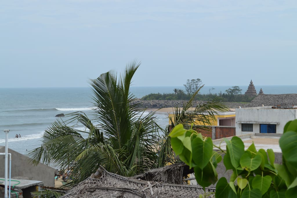 View from the rooftop - Shore Temple Point Break