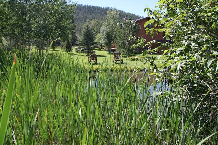 View at back of pond toward cabin
