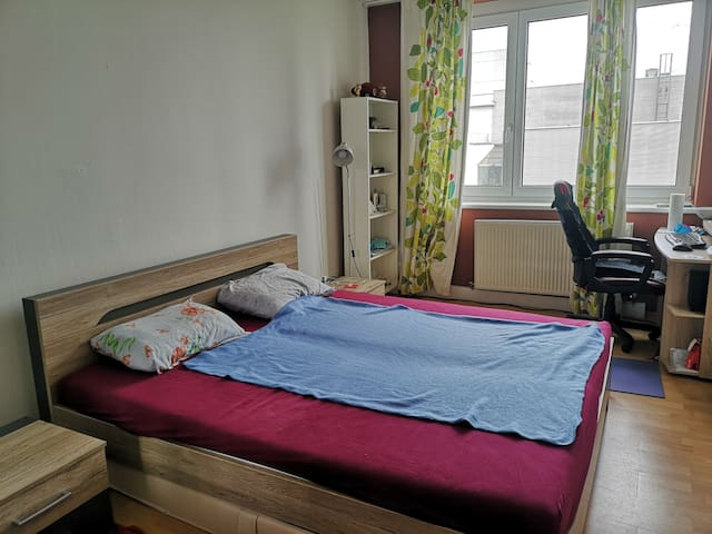 Cozy room in heart of Linz!