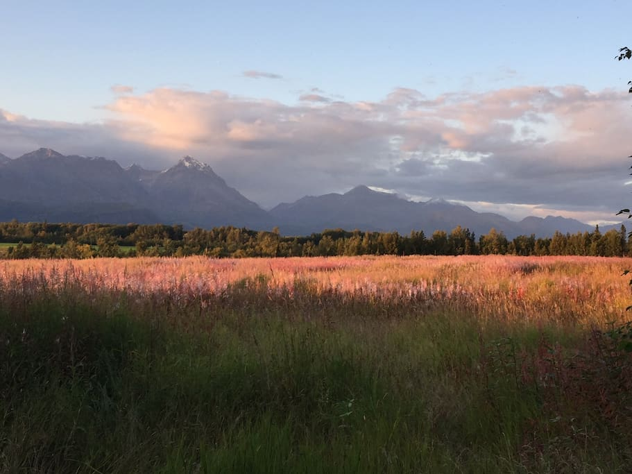 Looking across to the Talkeetna Mountains.