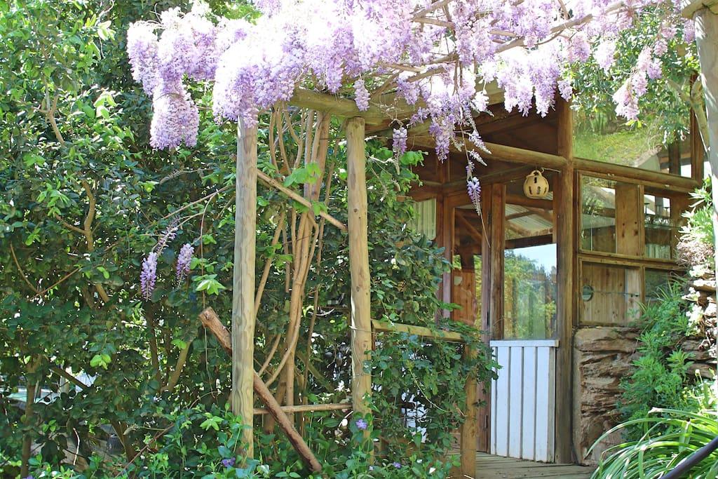 There's a beautiful sitting area underneath our gorgeous arbor, perfect to watch the sunsets and enjoy a family BBQ