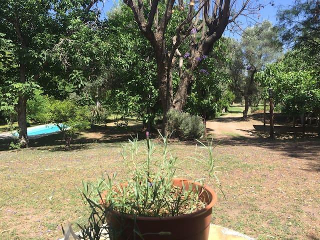 Relax en cabaña con pileta y parque - Las tapias  - House