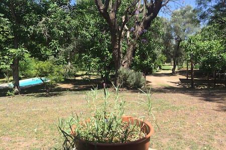 Relax en cabaña con pileta y parque - Las tapias  - 独立屋
