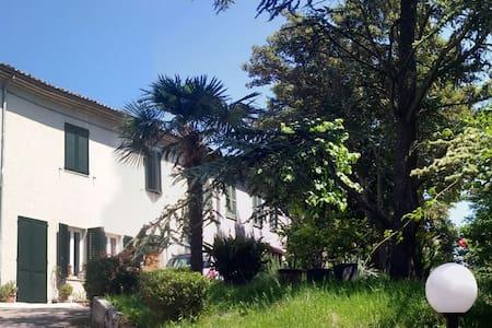 Stanza Rosa immersa nel verde - Pesaro
