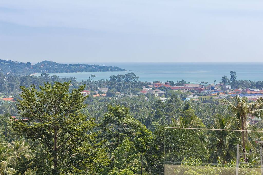 Panoramic view on the Lamai bay and the the splendid coconut grove