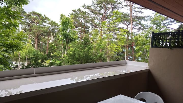 Inside Camp John Hay, Best place to stay in Baguio