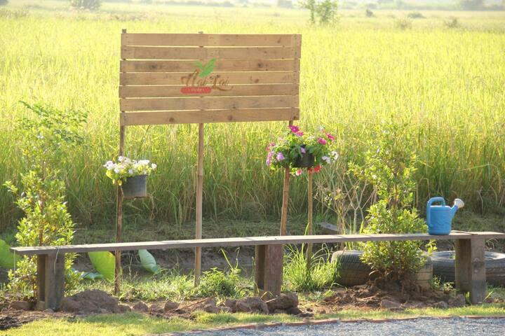 Nai Rai Chai Thung Camping
