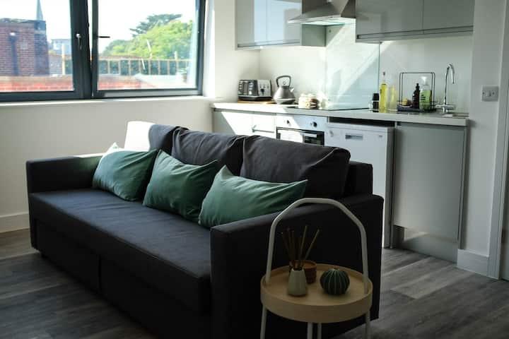 Bright Eco Friendly Apartment