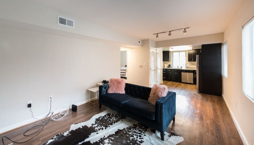 Posh Renovated Apt Close to Downtown DC - Arlington - Appartement