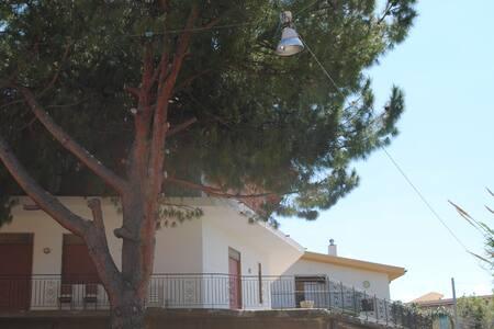 Pine Tree Team (Only Group) - Barcellona Pozzo di Gotto - Leilighet