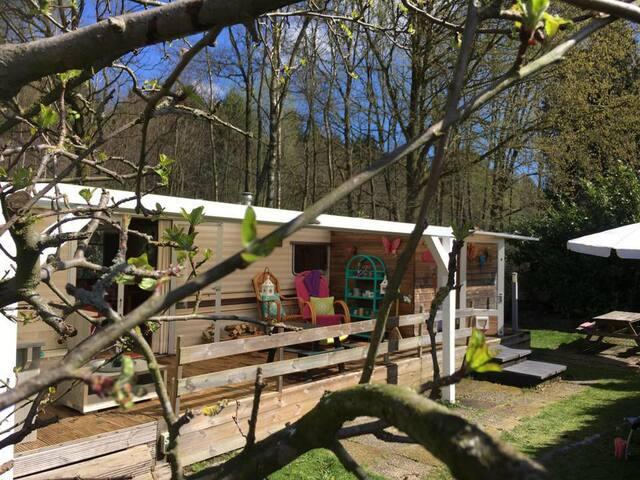 Fijne knusse caravan met tuin, bij bos en strand! - Zeewolde