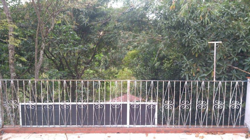 Vista da área externa (varanda descoberta). Pode-se ver vegetação nativa, o Rio Paraíba do Sul e animais da fauna local.