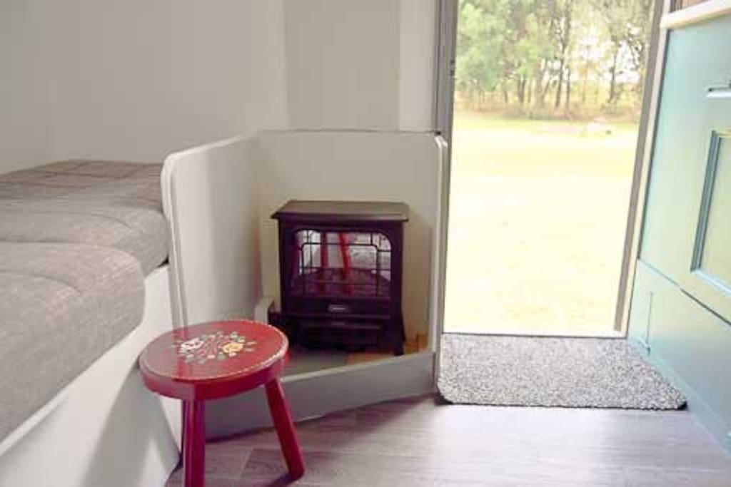 Interior with electric fire