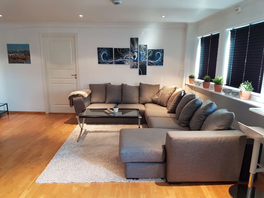 Lovely and comfortable couch in the living room