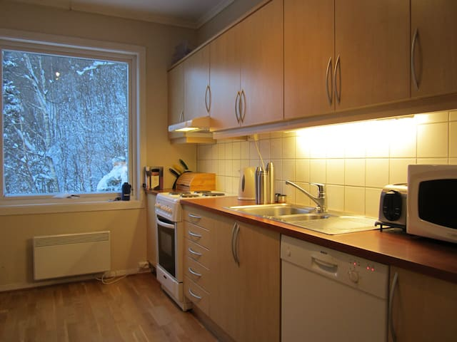 Dishwasher, cooker, microwave