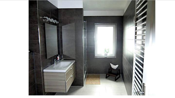 1-Raumwohnung, Bad mit Dusche, Küche und Balkon,