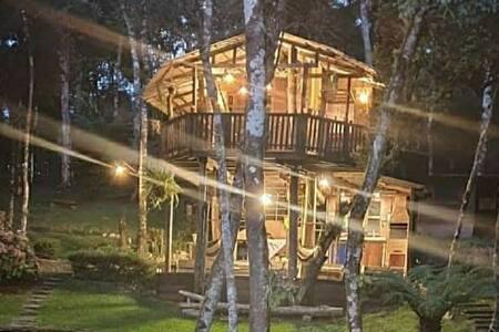 Casa na árvore, um dia de sonho! treehouse.