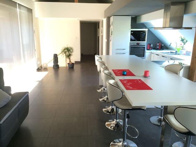 Belle chambre au cœur de l'Alsace. - Obermodern-Zutzendorf - Appartement
