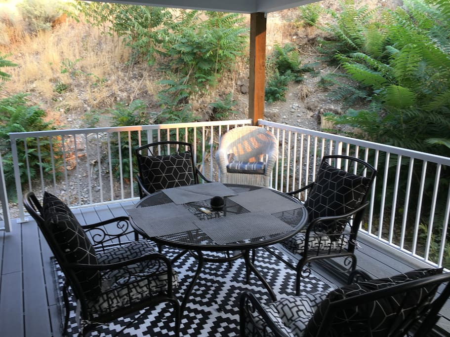 Back Patio (Another Angle)