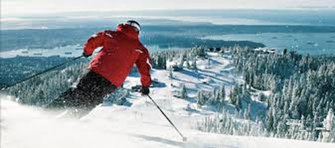 Skier's Suite, beautiful retreat near Grouse
