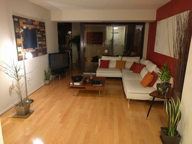 Beautiful, accessible, with parking - Arlington - Condominium