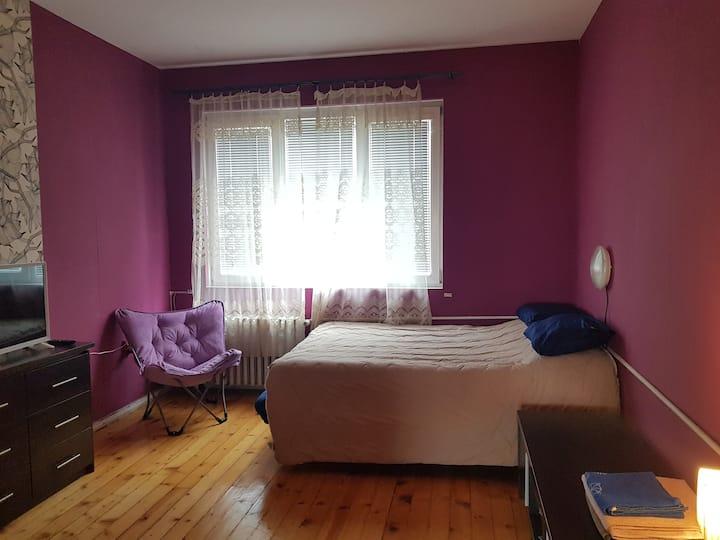 Cozy apartment in the center of Sofia