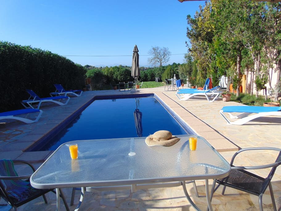 swimming pool and terrace