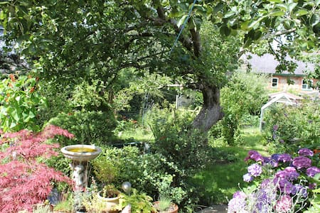 19th century Cosy stone Cottage, close to town. - Totnes - House