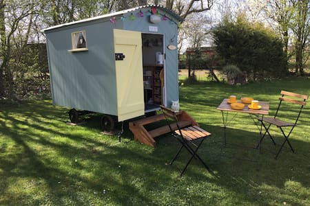 'The Birdbox'  unique ' tiny' shepherds hut.