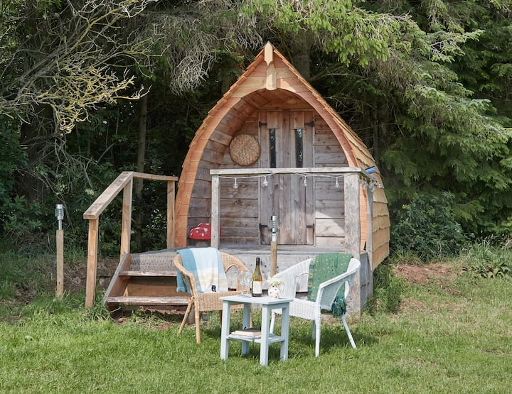 The Little Pod in the Woods