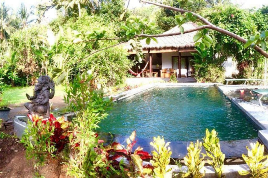 Bungalow, pool and garden