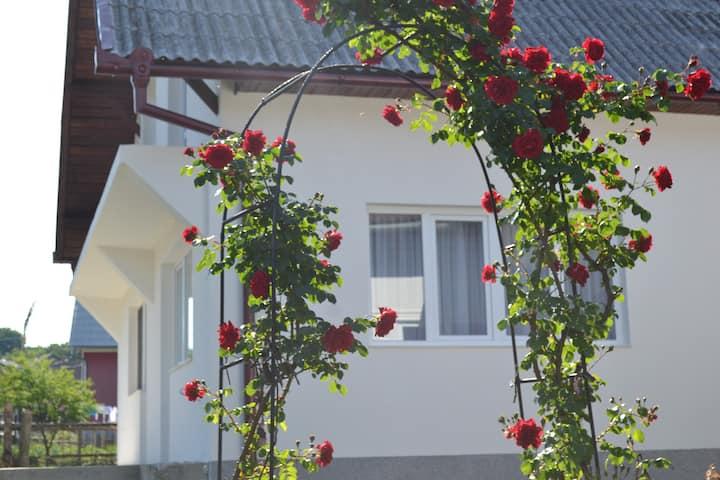 Transylvania countryside house
