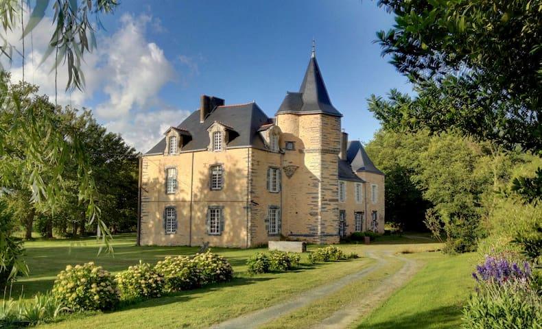 Studio au château de la Cineraye - Vay - ปราสาท