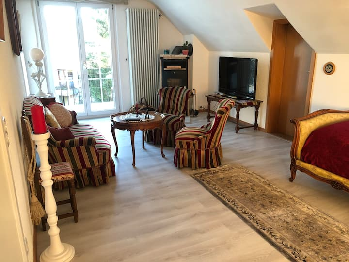 1-room Dream apartement in nice house near forest