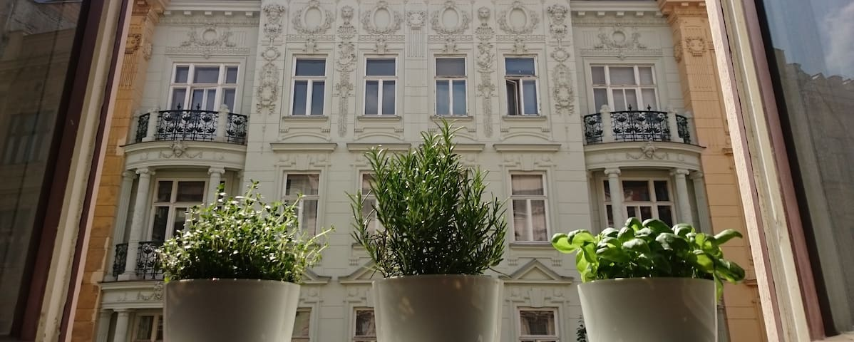 Spacious light room - Brno - Appartement