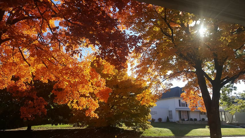 Porch view during Maple leaf season in Baldwin City