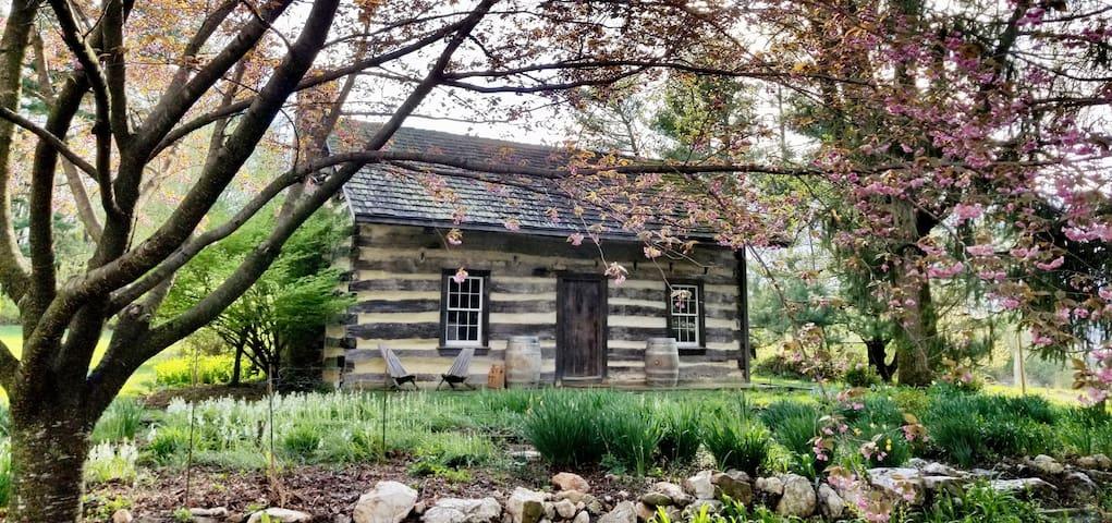 Rustic cabin + modern luxury in Lovettsville