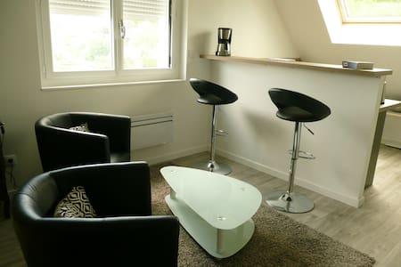 studio neuf lumineux et calme - Le Mans - House