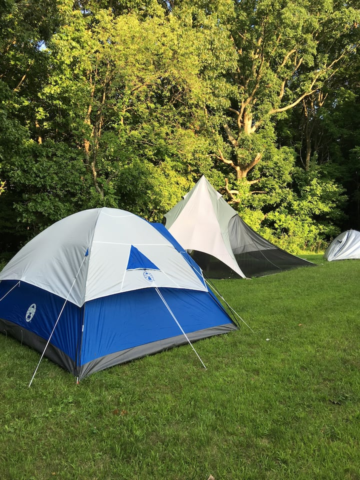 BYOT 3  (Bring your own tent!)