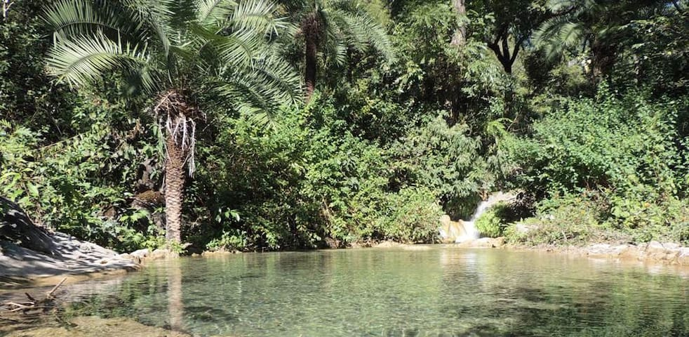 nature pool at the entrance of rishikesh valley