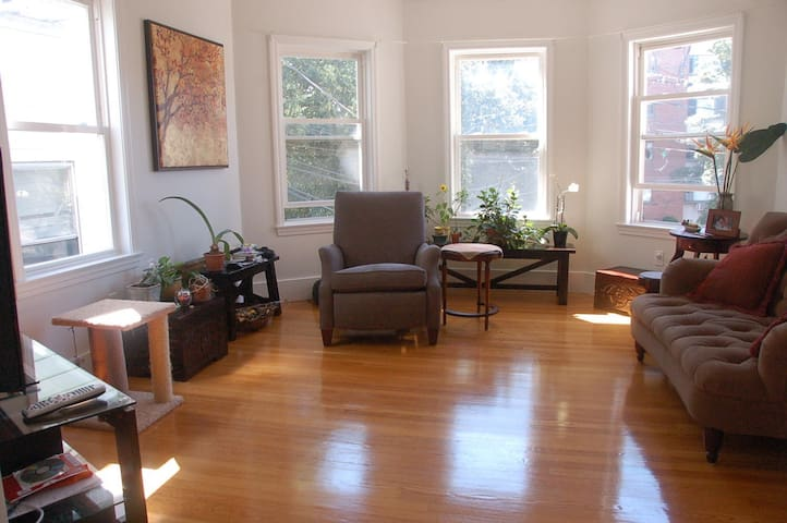One bedroom in a Nice Apartment near Harvard Sq.