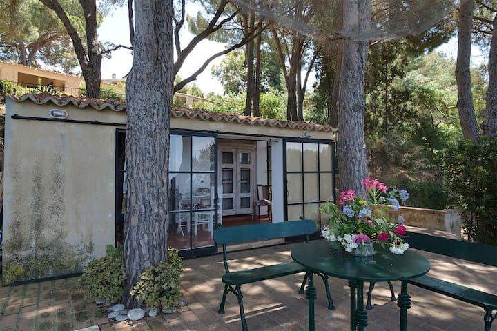 Casa Bocce - Faro Capo Vaticano - Casa