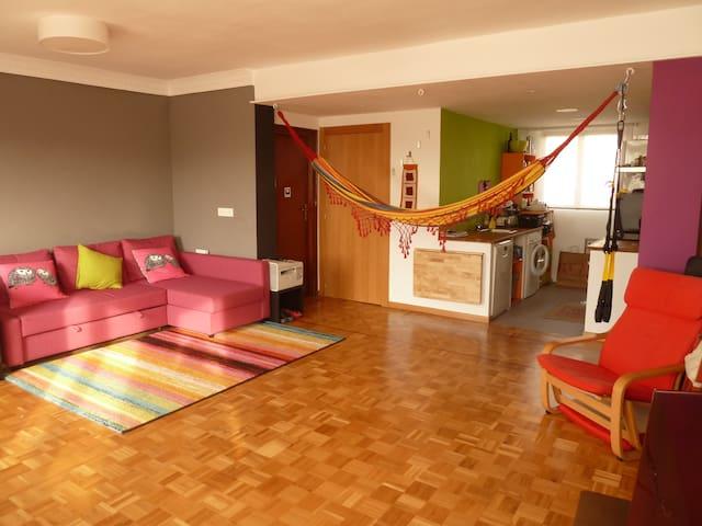 Habitación doble en precioso piso en el centro - Pamplona - Hus