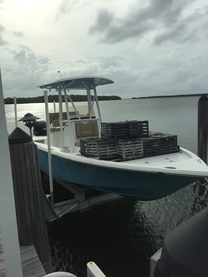 Time to set out the Stone crab traps