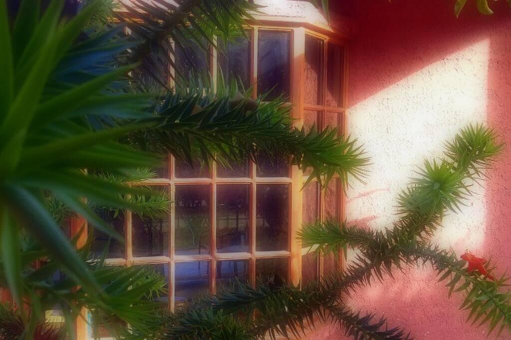 Sala con vista al Jardín.