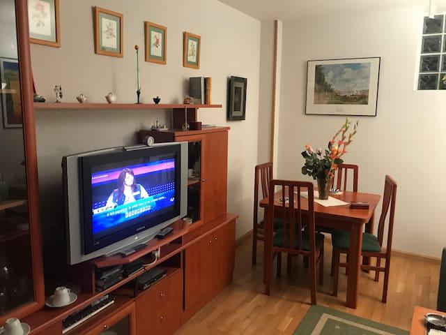 Cozy flat next to the Royal Palace of La Granja