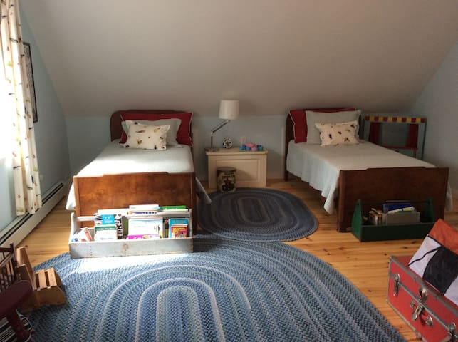 Kid's Bedroom 2 Twin Beds Toys and Wildlife Decor