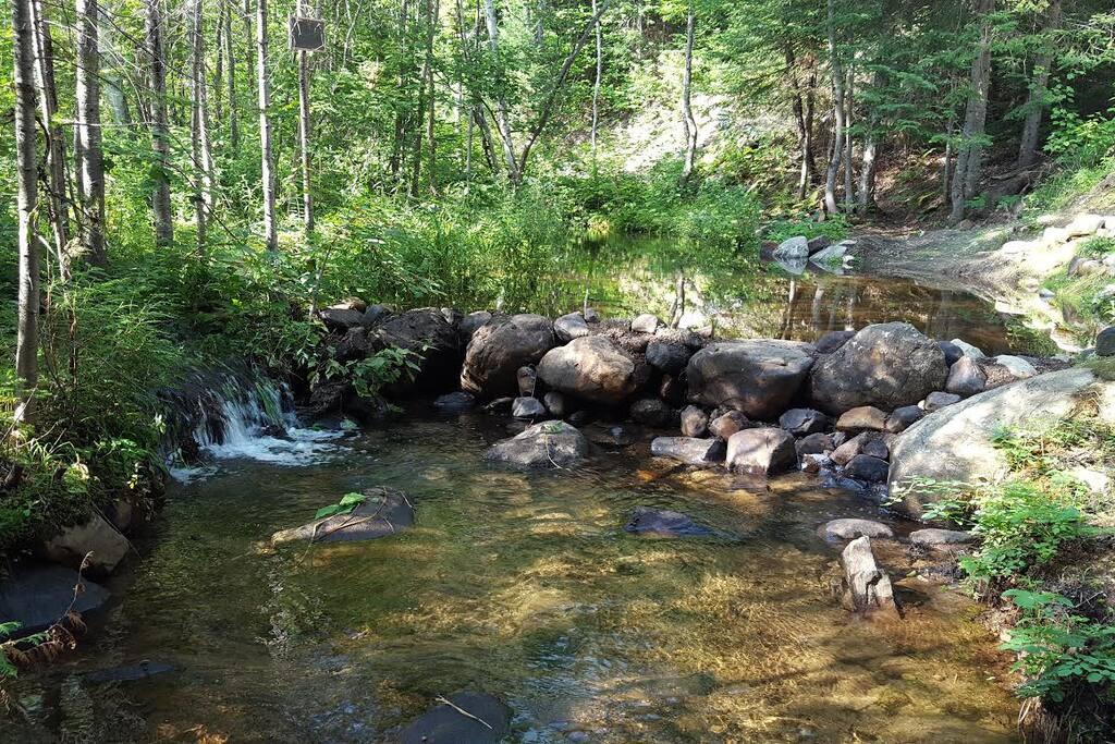 Ruisseau avec bassin bagnable sur le terrain