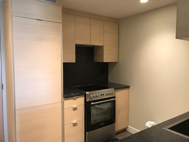 One bedroom + den unit (One year old building) - Vancouver - Appartement